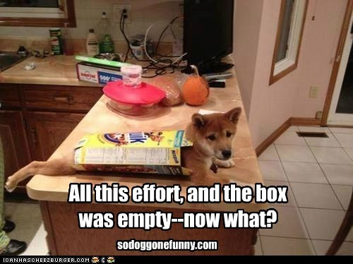 All this effort, and the box was empty--now what? sodoggonefunny.com