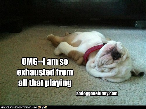 OMG--I am so exhausted from all that playing sodoggonefunny.com
