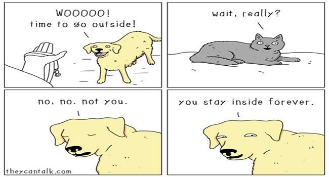 they can talk animal comics