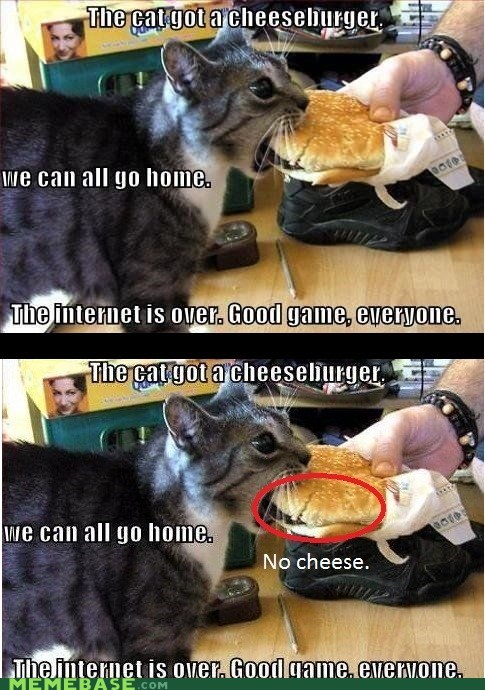 cheezburger,go home,cheese,re-frames