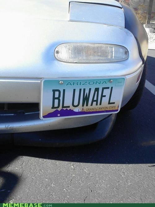 shock sites license plate blue waffle - 6983948800