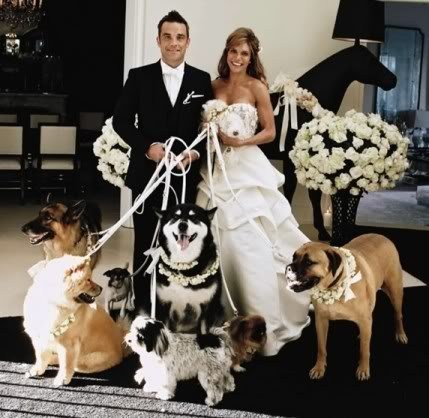 dogs,wedding party,robbie williams