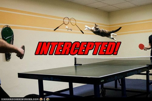 cat game interception funny - 6984903680