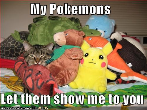 My Pokemons  Let them show me to you
