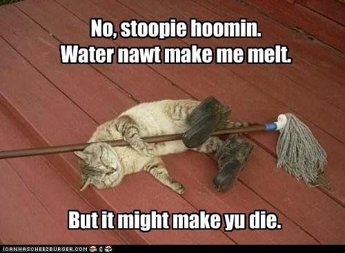 No, stoopie hoomin. Water nawt make me melt. But it might make yu die.