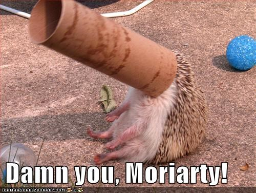 Damn you, Moriarty!