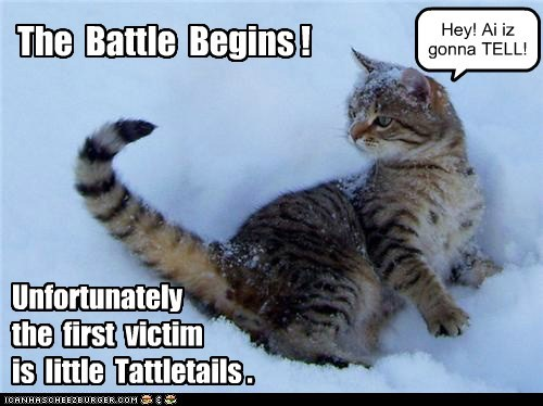 The Battle Begins ! Unfortunately the first victim is little Tattletails . Hey! Ai iz gonna TELL!
