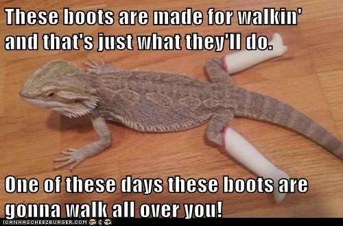 These boots are made for walkin' and that's just what they'll do. One of these days these boots are gonna walk all over you!