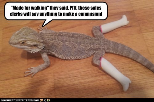 lizards stuck commission boots walking iguanas