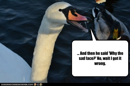 Sad face jokes ducks swans wrong messed up - 6986462464