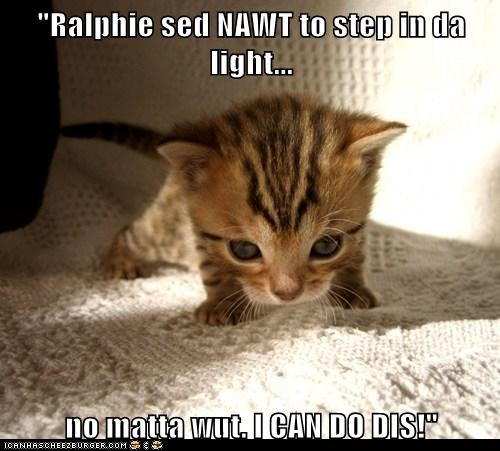 """Ralphie sed NAWT to step in da light...  no matta wut. I CAN DO DIS!"""