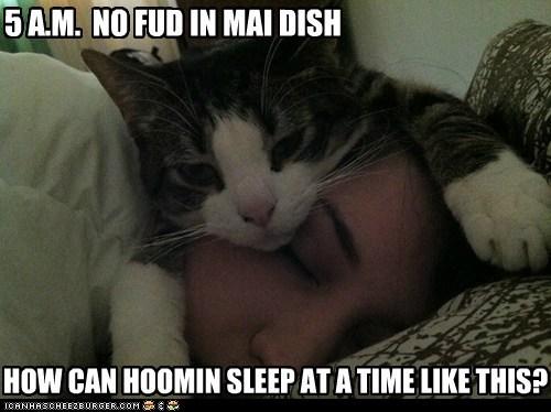 cat human sleep food - 6986807040