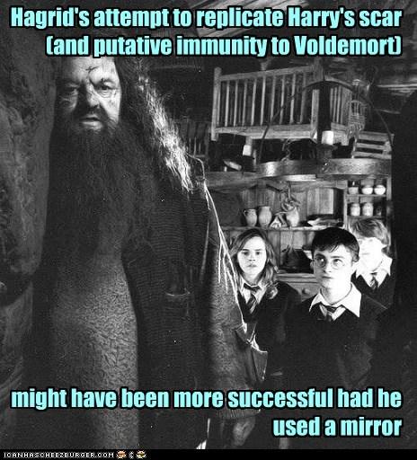 Harry Potter,Daniel Radcliffe,mirror,hermione granger,scar,forehead,rupert grint,Ron Weasley,cut,Hagrid,emma watson