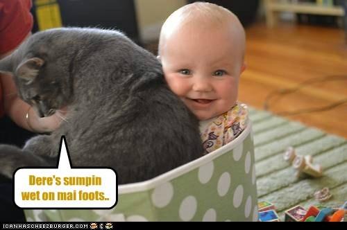 cat baby kid funny - 6986972928