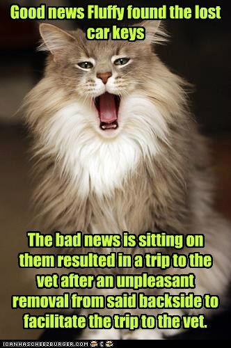 Good News Fluffy Found The Lost Car Keys Lolcats Lol Cat Memes Funny Cats Funny Cat Pictures With Words On Them Funny Pictures Lol Cat Memes Lol Cats