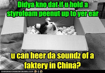 cat,China,box,ocean,factory,funny