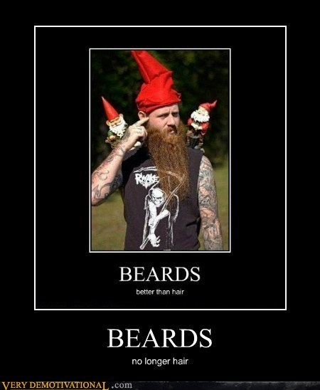 hair beard gnome - 6987310848