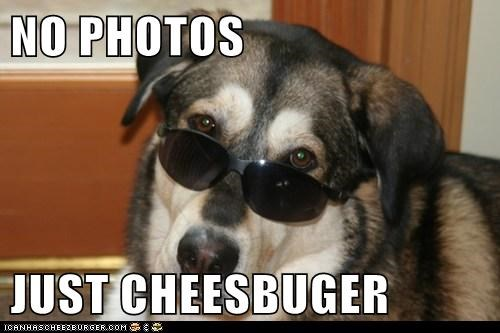 Cheezburger Image 6988549632