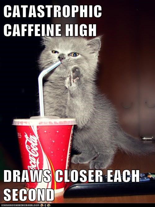 CATASTROPHIC CAFFEINE HIGH  DRAWS CLOSER EACH SECOND