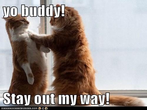 yo buddy!  Stay out my way!