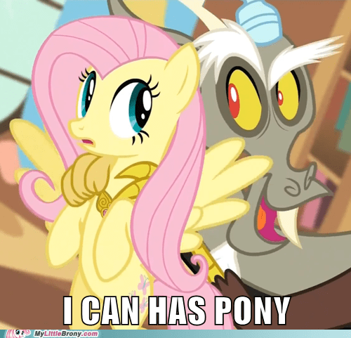 discord hnnng can has fluttershy - 6989547008