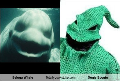 beluga,TLL,whale,the nightmare before christmas,oogie boogie