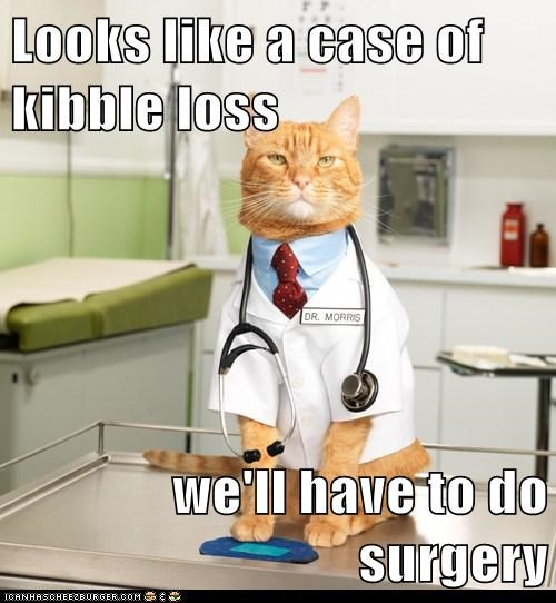 Looks like a case of kibble loss  we'll have to do surgery