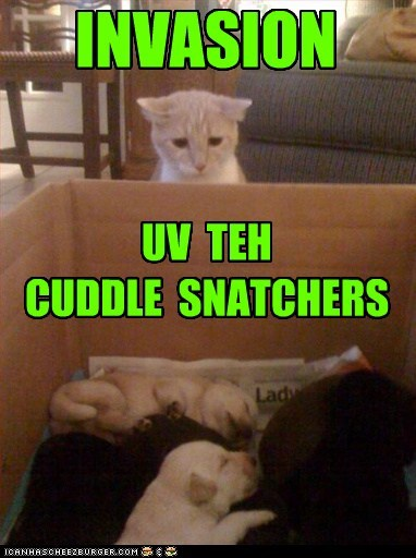INVASION UV TEH CUDDLE SNATCHERS