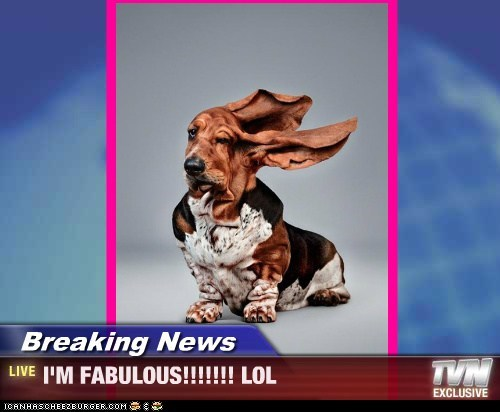Breaking News - I'M FABULOUS!!!!!!! LOL