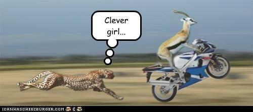 cheetah clever chasing gazelle running motorcycle jurassic park - 6990725376
