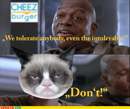 Cheezburger Image 6991034624