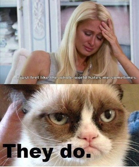 paris hilton,honesty,Grumpy Cat