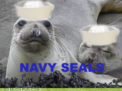 shoop,navy seals,navy,seals,hats,literalism,double meaning