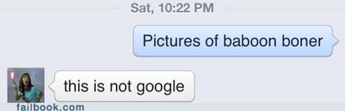 baboon,google,AutocoWrecks