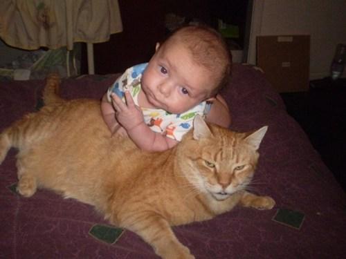 baby pose smooth thug Cats - 6991351808