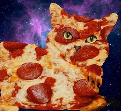 cat,shopped pixels,pizza