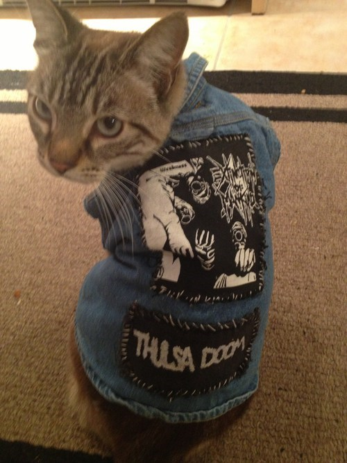 punk,cat,jean jackets