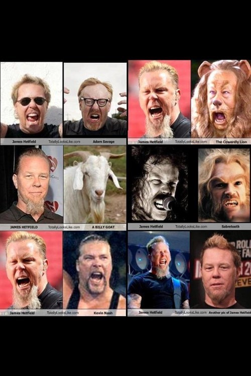 James Hetfield Looks Like Things