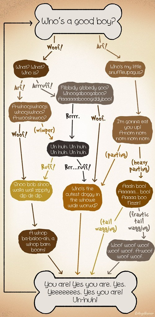 dogs college humor good boy woof flow chart - 6992064000