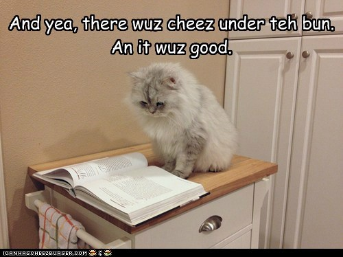 cat religion bible funny - 6992272640