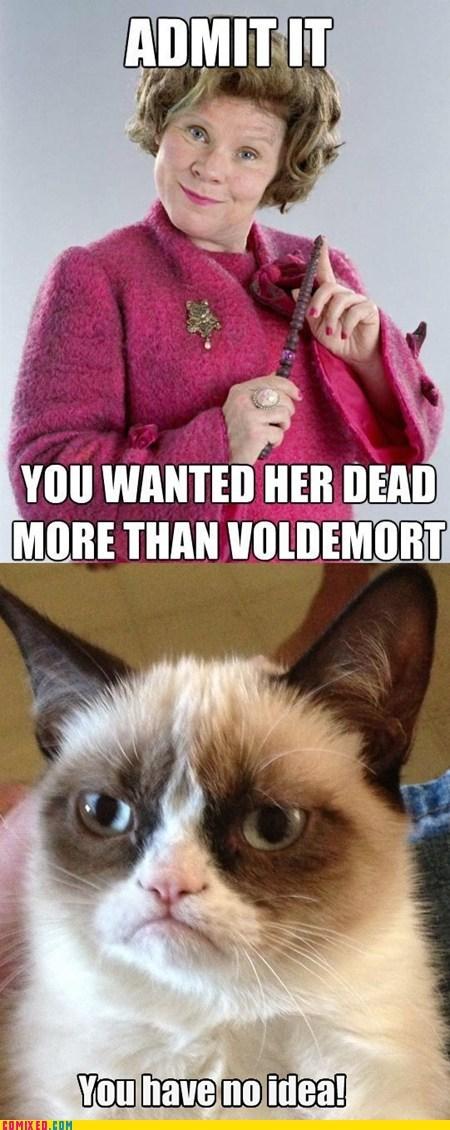 Harry Potter Movie dolores umbridge Grumpy Cat - 6992696576