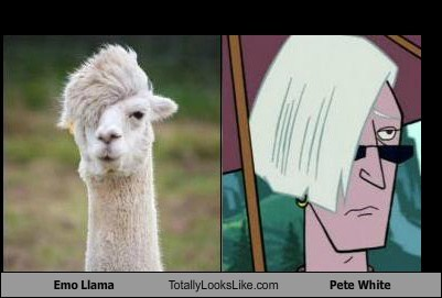 llama,TLL,emo,venture brothers,cartoons,pete white