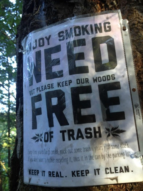 woods drugs marijuana trash washington - 6993648640