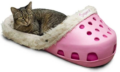 fashion bed product crocs ugly Cats shoe - 6993712128
