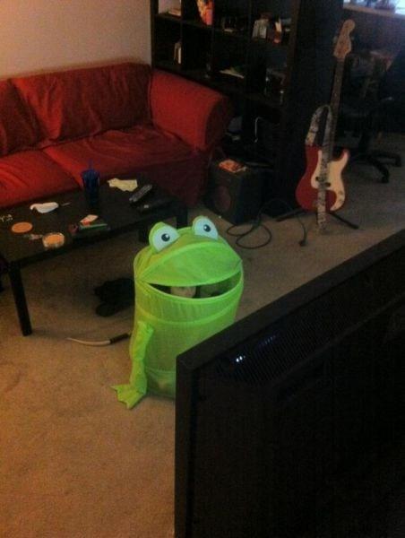costume laundry bin frog - 6993767424