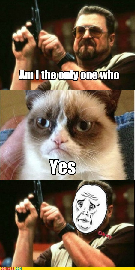 Grumpy Cat am i the only one around here - 6993785856