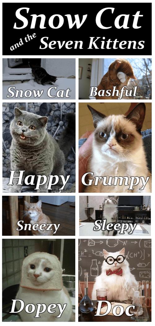 tardar sauce inbread fairy tale snow white comic Grumpy Cat Cats happy cat image - 6994115584