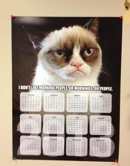 calendars,Grumpy Cat,morning people