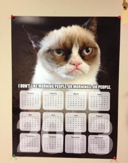 calendars Grumpy Cat morning people - 6994192128