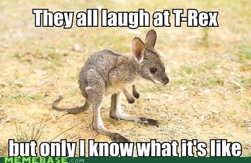 kangaroo cute little arms t rex - 6994201344